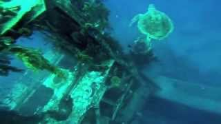 Steve Gorel Freedive AIDA 3   Eilat, Satil Wreck H