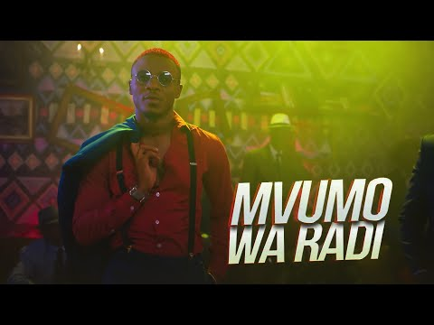 ALIKIBA - Mvumo Wa Radi (Official Video) thumbnail