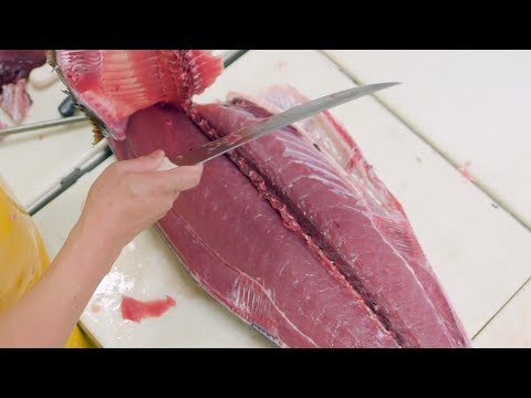 Fish Filleting - Ahi Tuna