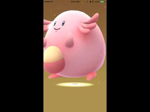 Pokemon Go - Hatching 9 X 10km Eggs