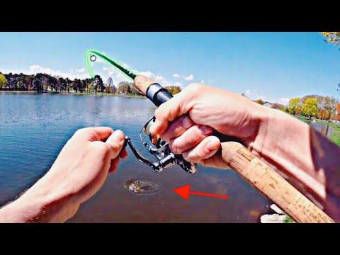 Pond Fishing - UNEXPECTED CATCH! | Oshkosh, WI