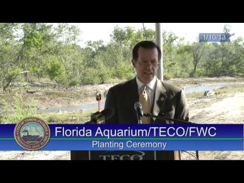 The Florida Aquarium, Florida Fish and Wildlife Conservation Commission and TECO Planting Ceremony