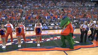 Harlem Shake Florida Gators Edition LIVE