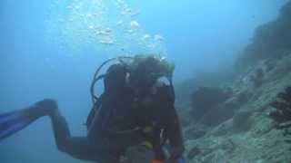 HD Подводный мир Мальдивских островов - Maldives Underwater World