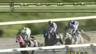 【競馬】 2008年 マイルチャンピオンシップ南部杯