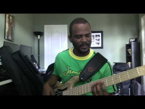 String Joy Strings on F Basses