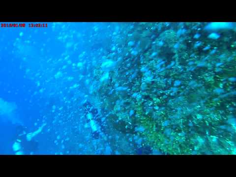 scua diving in cayman island 1st dive 1. i was using a gear pro activ for this video