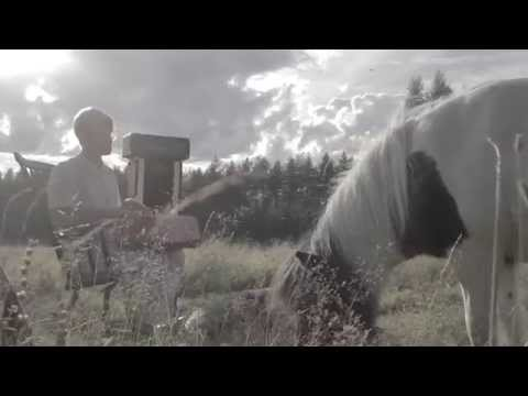 Tapio Lempivaara - Girl Of Shanghai (Virallinen Musiikkivideo)