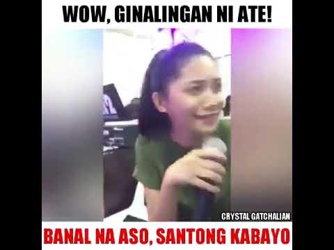 Banal na aso Santong kabayo