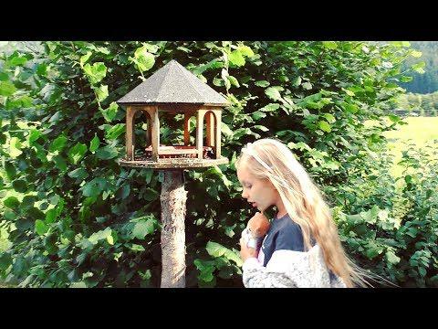 🌺 Видео для детей  💖 Сюрприз В Стране Чудес 💖🌺  #какалисавстранечудес
