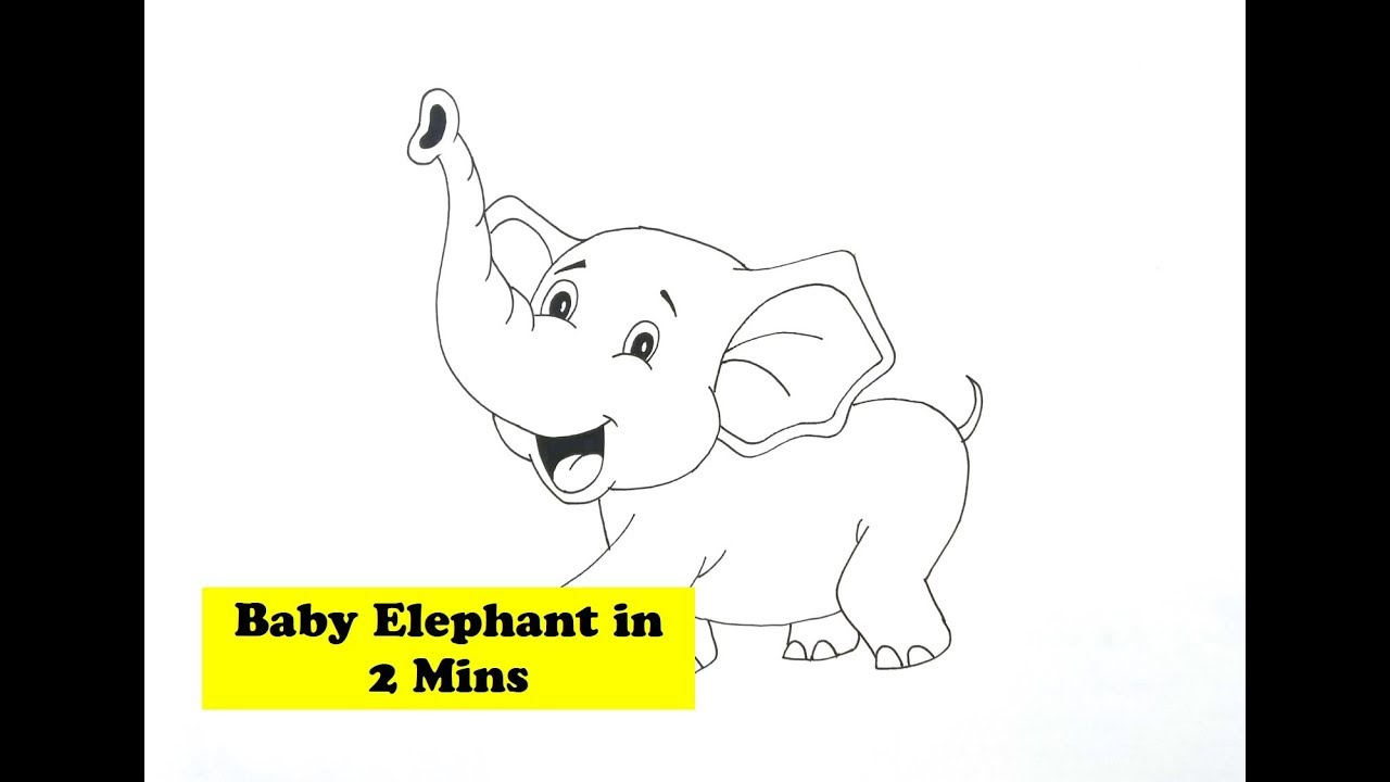 How To Draw Baby Elephant Drawing For Kids Step By Step Simple And Easy Youtube