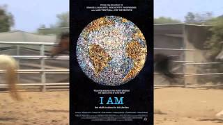 Saffyre Sanctuary Changing Horses Documentary Trailer