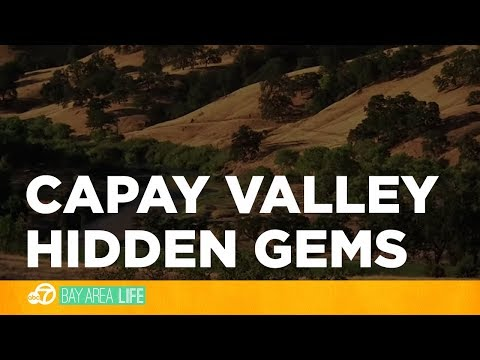 Hidden gems await you in the Capay Valley
