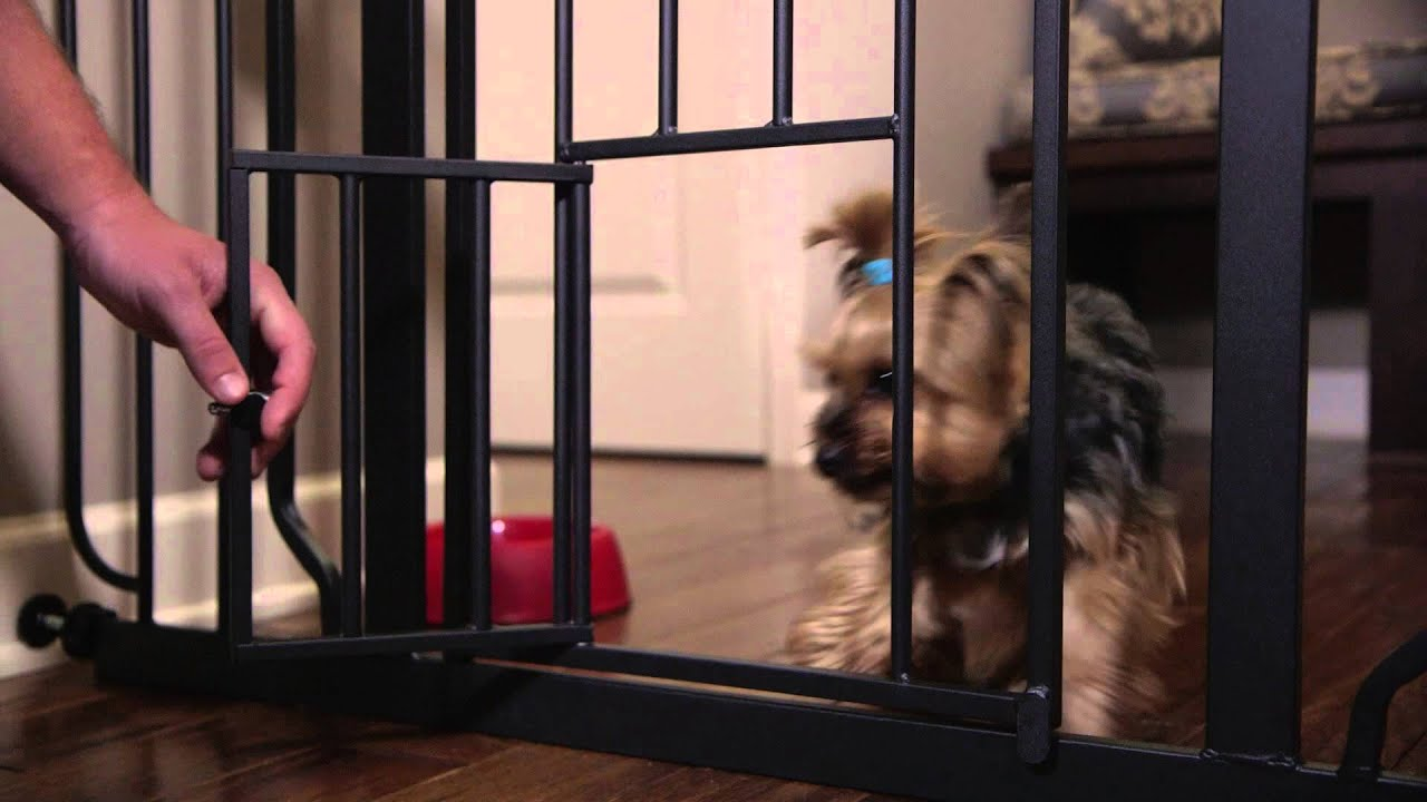 Carlson Design Paw Walk-Through Pet Gate - YouTube