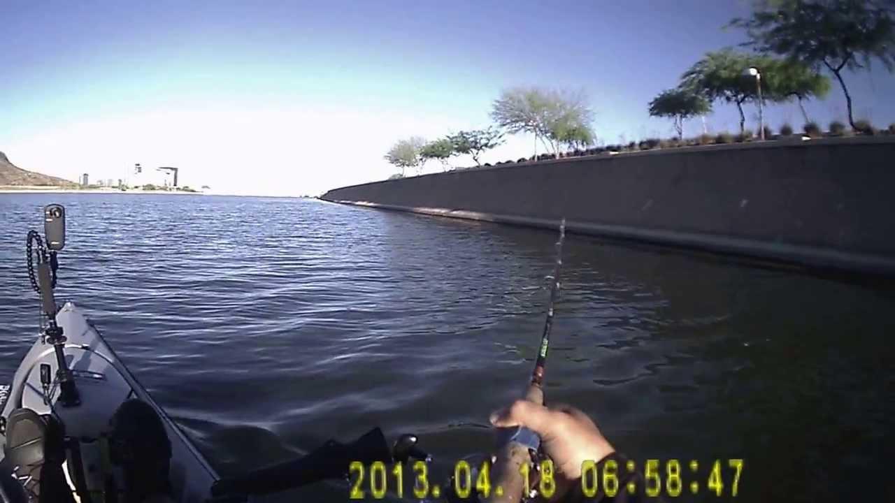 Tempe town lake kayak fishing saving a catfish for Tempe town lake fishing
