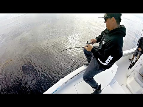 HOOKED Into Something GIANT 100 Feet Down!!! --(Battling Calicos In The Kelp)