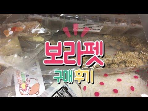 [보라펫 구매 후기] 초보집사 테스트용 간식 (+단백질 곤충), 맛보기 사은품 / 햄스터 간식 클로즈업 / 바스락소리 주의