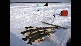Лучшая рыбалка на озерах Бурятии часть 2