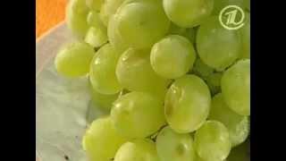 видео виноградный сок польза и вред
