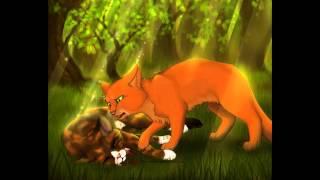 Коты-воители,Огнегрив(part 1)