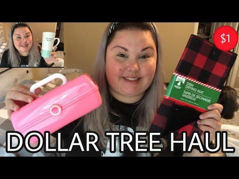 DOLLAR TREE HAUL | NEW ITEMS | BRAND NAME ITEMS