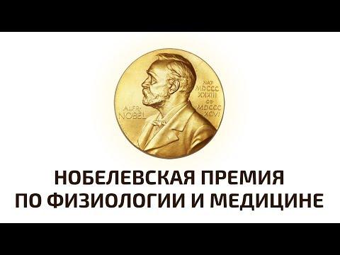 Нобелевская премия 2018 по физиологии и медицине. Объявление лауреатов. Прямая трансляция