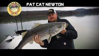 EastTNFishing: Fat Cat Newton and Melton Hill Bill - Watts Bar Lake 2017