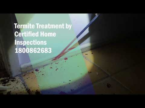 Termite Treatment - Termite damage is far and wide in Brisbane House