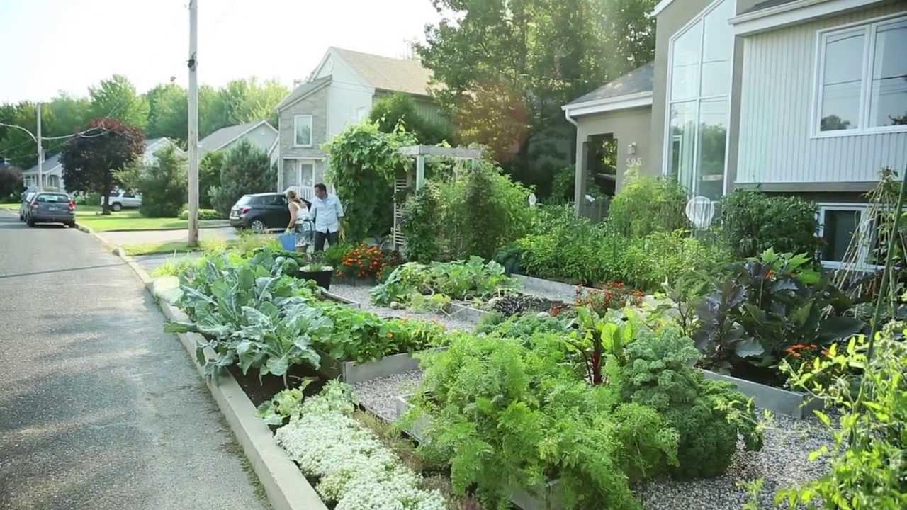 jardin potager urbain