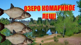 Русская Рыбалка 4 Лещ на Озере Комарином
