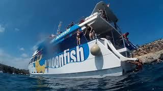 Mallorca 2018 Moonfish glass bottom boat
