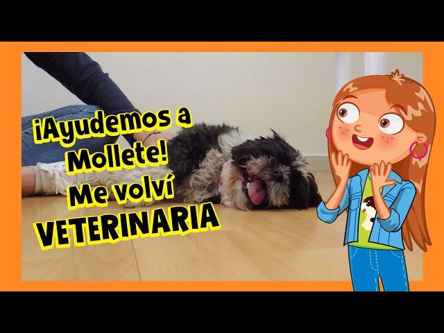 VDMNL HOSPITAL DE ANIMALITOS MI ALEGRIA JUGUETES