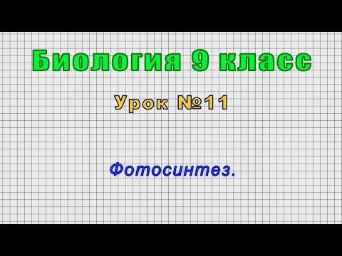 Видеоурок 9 класс фотосинтез