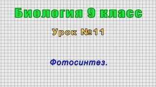 Биология 9 класс (Урок№11 - Фотосинтез.)