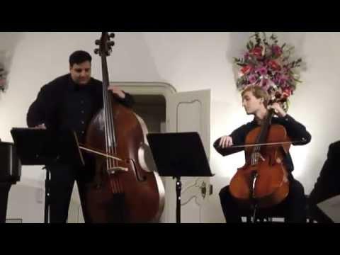 Rossini Duo For Cello Double Bass Stephan Koncz Cello And Odon Racz Bass