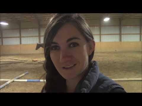 In The Barn #25 - Western Pleasure