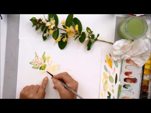 Learn how to observe, plan and paint this honeysuckle sprig.