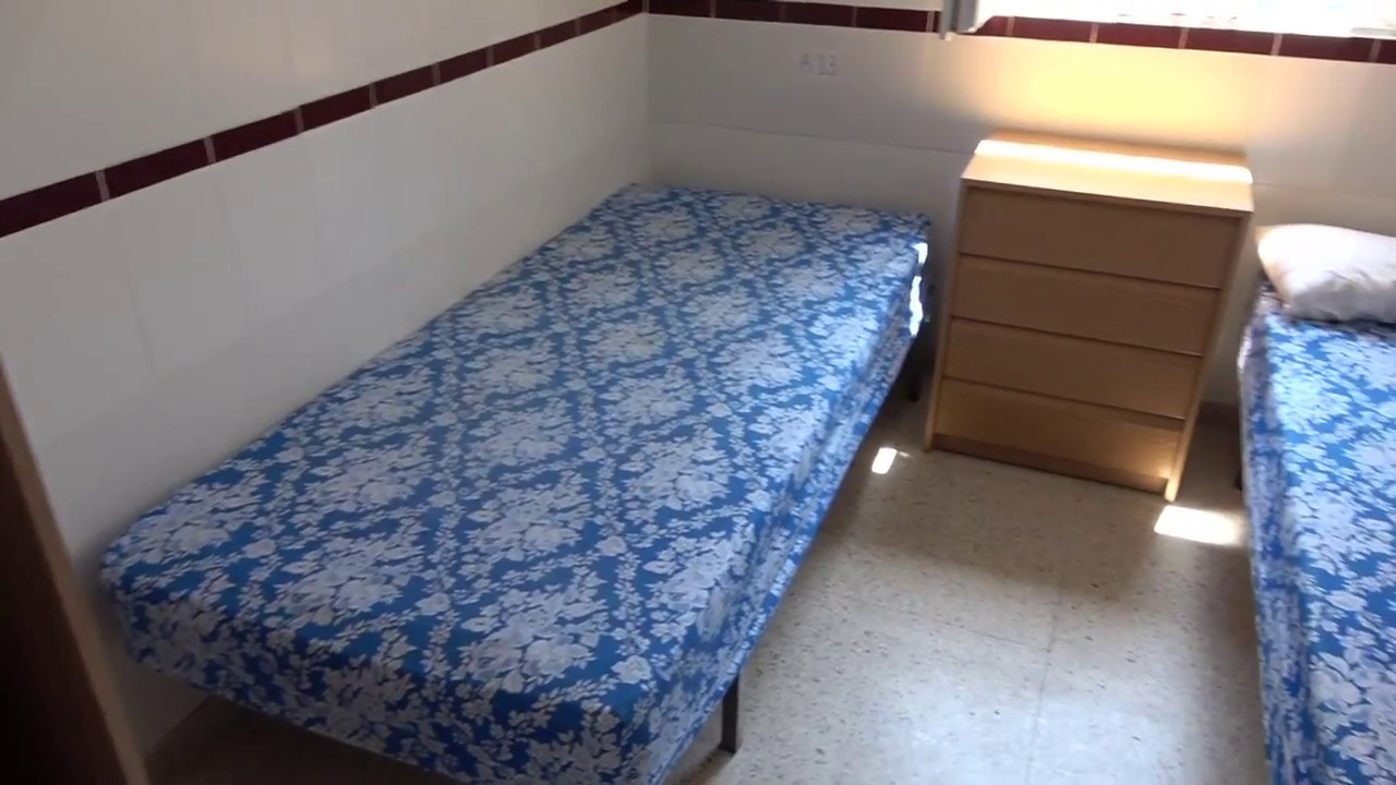 La Linea Shelter Hogar Betania Calling For Donations To Help
