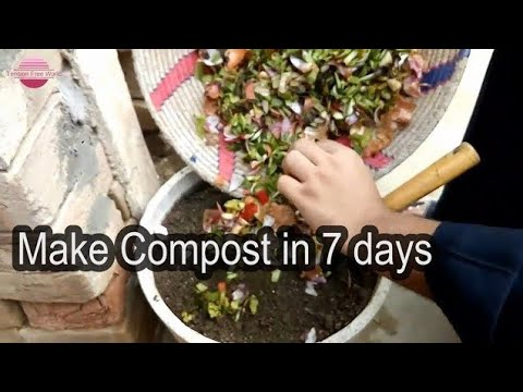 How to make compost in 7 days | Easy method of making compost | DIY | Tension Free World