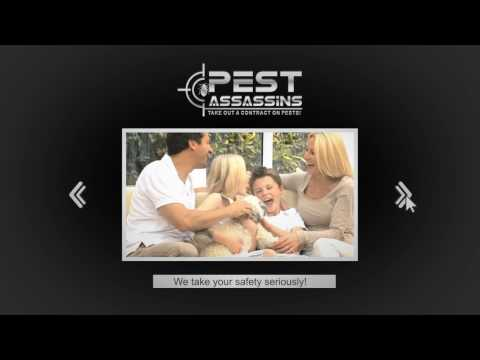 Best Local Pest Control Company North Attleboro, MA