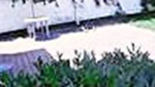 Homes for Sale - 106 Daniel Ave Rutherford NJ 07070 - Deborah Balchan