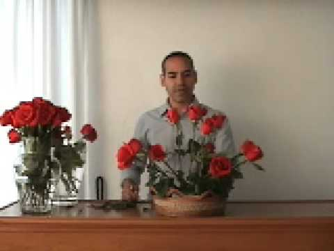 Permalink to Bouquet De Girasoles Para Novia