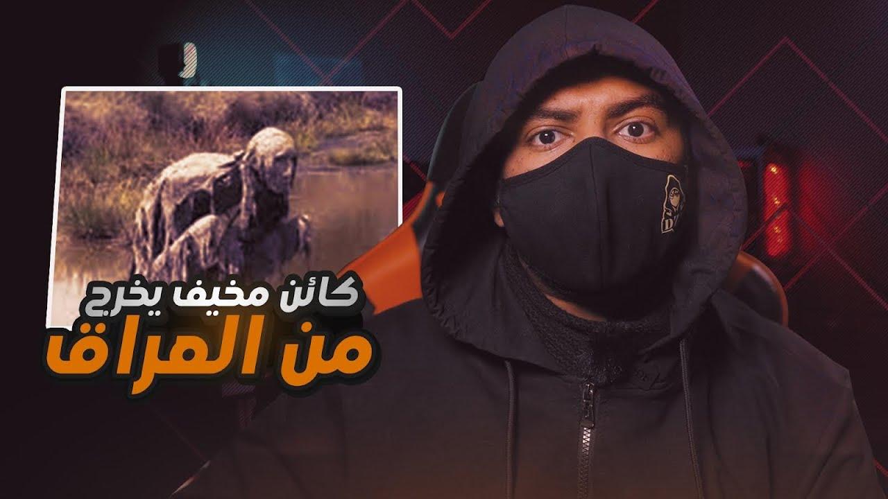 حقيقة الطنطل | كائن غريب ومخيف يخرج من العراق !!