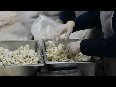 Aleppo School meals final