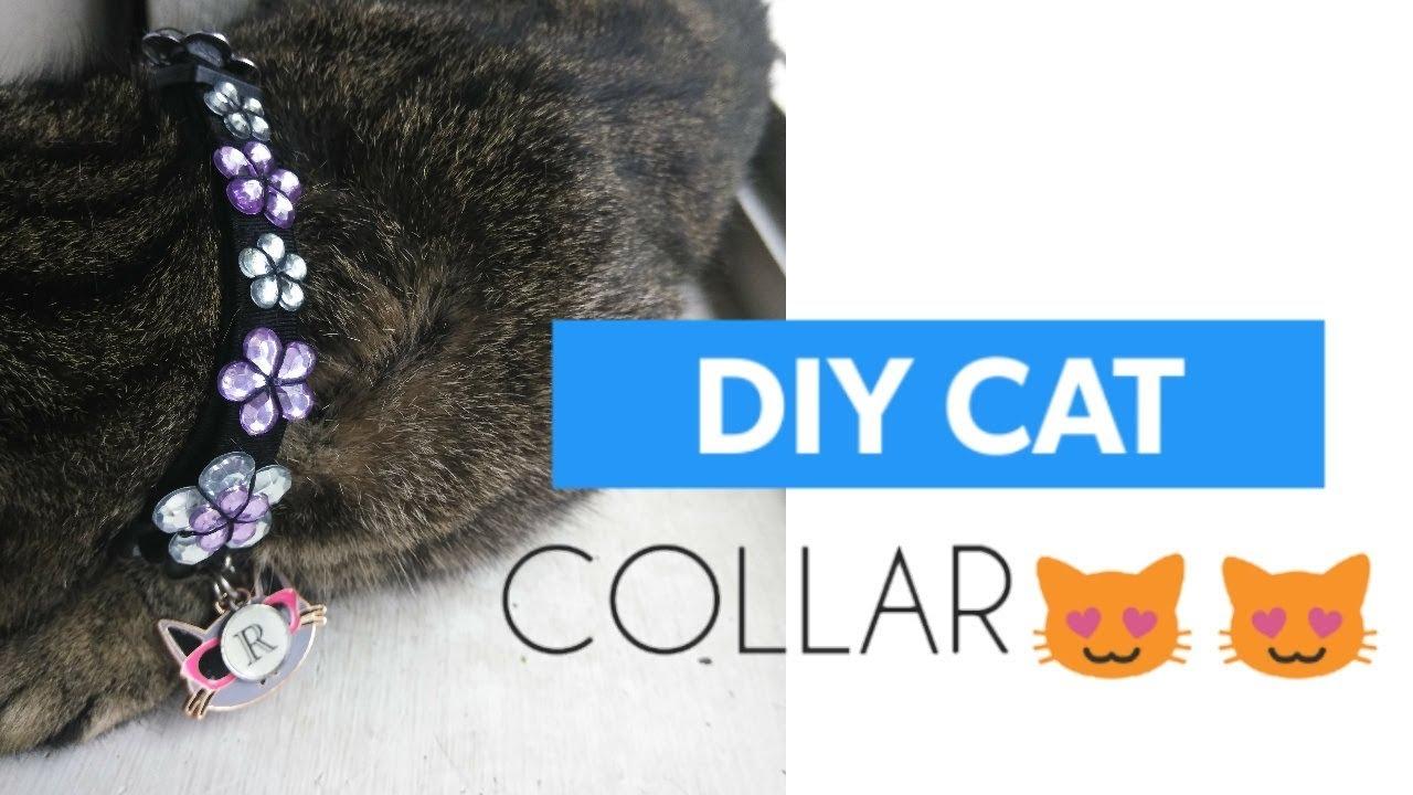 Diy Cat Collar Super Easy