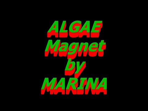Algae Magnet to Clean Fish Tank Glass by Marina and Hagen