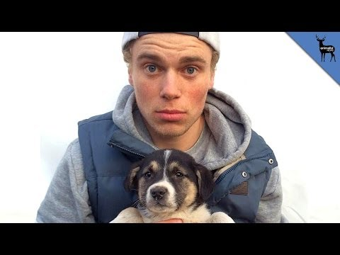 Sochi Olympics: U.S. Olympian Rescues Stray Puppies