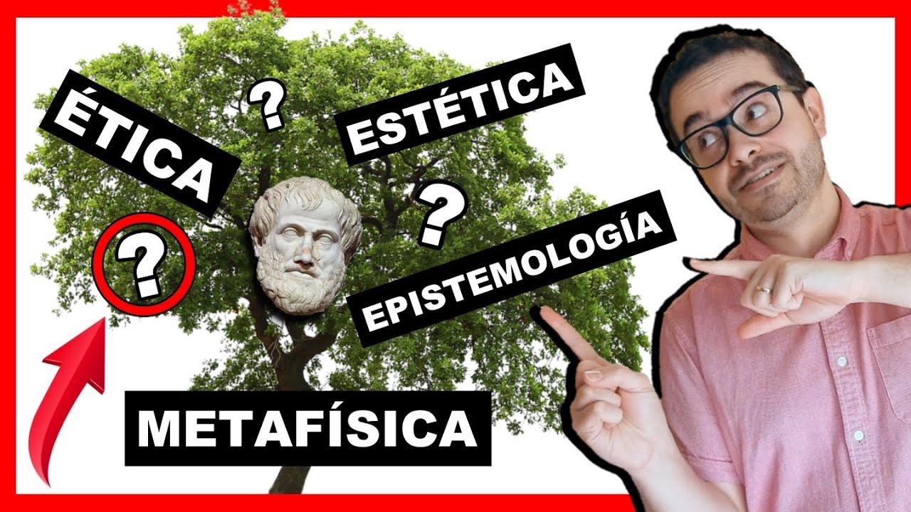 Las Ramas De La Filosofía 19 3 Disciplinas Fascinantes Youtube
