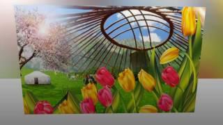 Лучшее поздравление с праздником Наурыз!Навруз #Nowruz