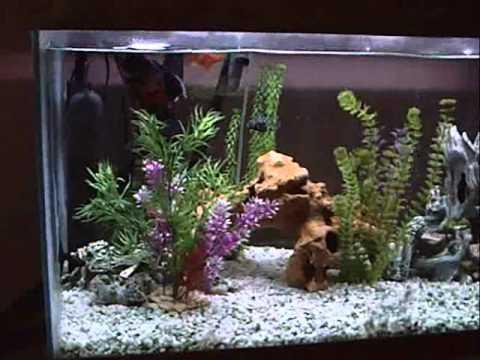 Headboard fish tank & Headboard fish tank - YouTube